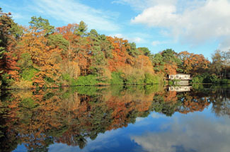 View of Kings Lodge 14 Indio Lake - Holiday Lodges at Indio Lake Bovey Tracey Devon England