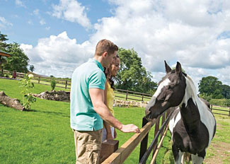 Sun Hill Lodges at Constable Burton North Yorkshire is ideal for equestrian enthusiasts