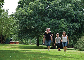 Lovely grounds at Crowhurst Park - Holiday Lodges near Hastings East Sussex England