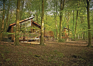 Micheldever holiday lodges in Hampshire England - Blackwood Forest Lodges