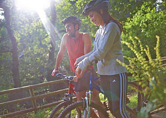 Hire a bicycle at Deerpark Holiday Lodges - Accommodation near Liskeard Cornwall England