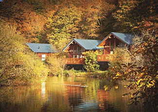 Location of Deerpark Forest near Liskeard - Holiday Lodges in Cornwall England
