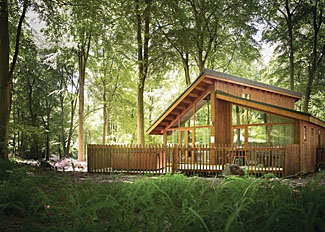 Photo of typical Golden Oak Hideaway Lodge ( Ref LP8066 ) at Thorpe Forest Holiday Lodges in Thetford Forest Norfolk England