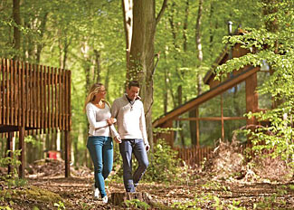 Woodland setting of Thorpe Holiday Lodges in Thetford Forest Norfolk England