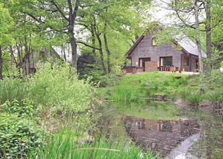 Park setting at Ramshorn Estate Woodland Lodges - Oakamoor in Staffordshire England