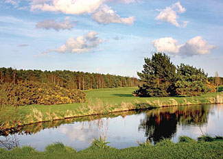 Park setting at Fairway Lakes Lodges- Fritton holiday park in Norfolk England