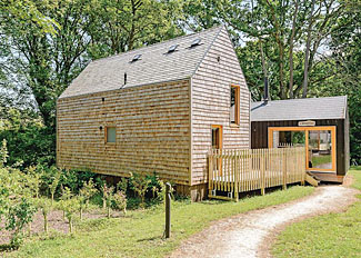 Lodge setting of Forest Lodge 3 ( Ref LP8961 ) at Burnbake Forest Holiday Lodges - Self catering near Wareham