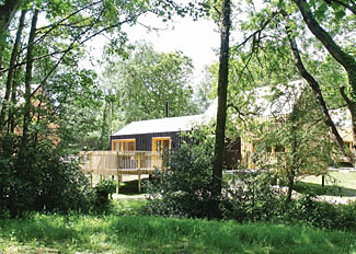 Park setting at Burnbake Forest Holiday Lodges near Wareham Dorset England