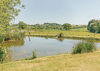 Rural setting of holiday lodges at Peckmoor Farm - Crewkerne in Dorset