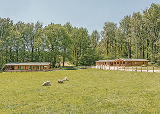 Park setting at Peckmoor Farm Lodges - Holiday Lodges in Crewkerne Dorset England