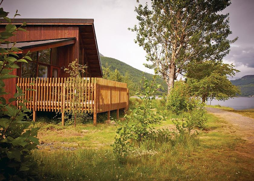 Typical Silver Birch Lodge ( Ref LP3973 ) Self Catering Lodge Accommodation in Ardgartan in Argyll Scotland