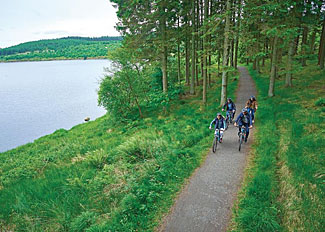 Woodland cycle routes at Kielder Water - Holiday Lodges in Northumberland England