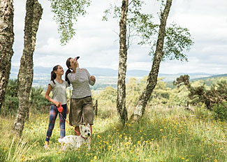 Enjoy woodland walks near Beauly - Kiltarlity Holiday Lodges Inverness-shire Scotland