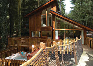 Golden Oak Treehouse Lodge ( Ref LP8071 ) Holiday Lodge in Thetford Forest - Thorpe Lodge Accommodation in Norfolk England