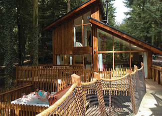 Typical Golden Oak Treehouse ( Ref LP5579 ) Forest of Dean holiday lodge near Coleford Gloucestershire England