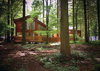 Woodland setting in Forest of Dean - Holiday Lodges near Coleford Gloucestershire